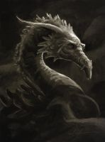 Dragon portrait by Manweri