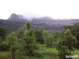 Bhandardara Scenery 4 by sds49in