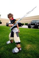 Action Ventus by kukochan