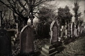 This our final Resting Place by Estruda