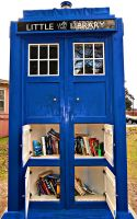 Little Library by Calypso1977