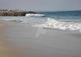 Carlsbad Beach_waves4 by azndlish