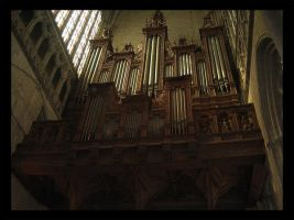 Organ by The-Absinth-Party