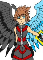 Winged Sora by Andy1134