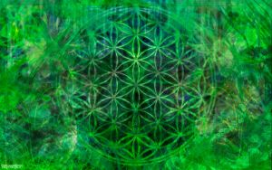 The Flower of Life by Val-Melkor