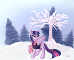 A meh winter pic. by KamiraCeeker