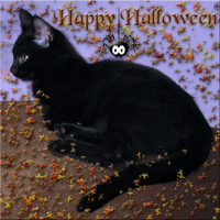 Happy Halloween Card 2013 by WDWParksGal