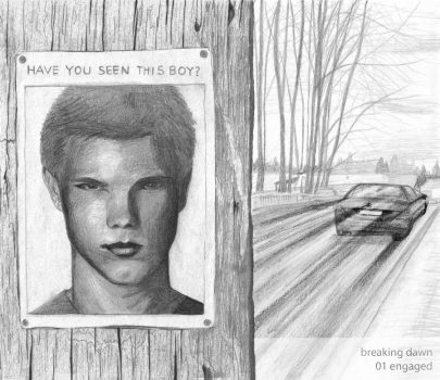 Forks: HAVE YOU SEEN THIS BOY? by nackmu