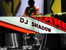 DJ Shadow in NYC by taxman3