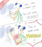 Optimistic Turtle solves traffic problems by solray-chan