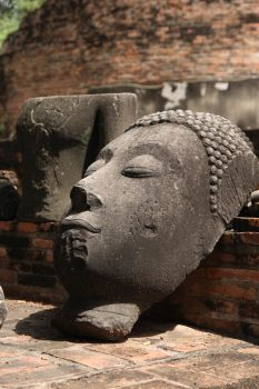 budda head in thailand by groothedski