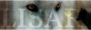 Alisaria Banner by Arletxx
