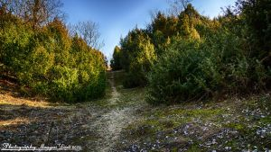 Hungarian landscapes. HDR. Full-HD. by magyarilaszlo