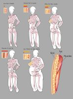 Obesity Map Anatomy Reference by Imoon90