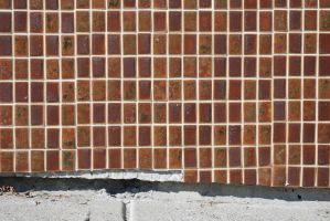 Wall Tiles 1 by GuruMedit
