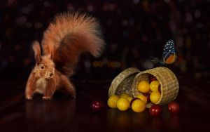 Squirrel by NellyGrace3103