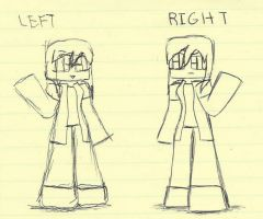 Left Vs Right by LilCatSilly