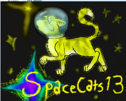 Spacecat ID:edited by spacecats13