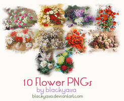 Flower PNGs: 9 by blackyaisa