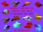 Siamese Fighting Fish Set No.3 by Silvertayl