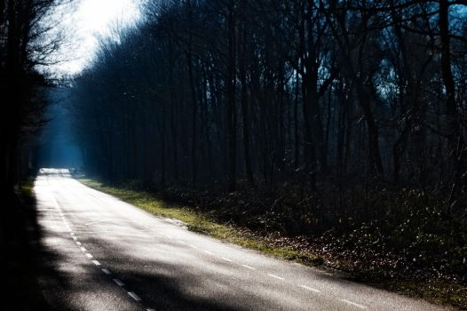 .: These Roads :. by syntheticdreamer