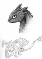 HTTYD - Toothless sketches by clover-magic