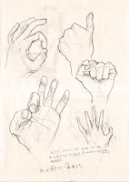 sketch- hand studies 281111 by Veleven