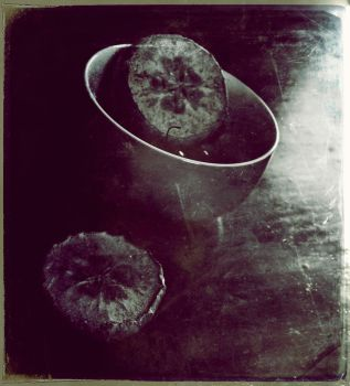 Another Nature Morte by saturated-insanity