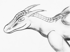 A Random Dragon (Pencil Drawing) by TheUnknownety