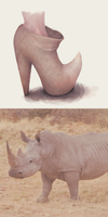 Rhinoceros by AnastaSilly