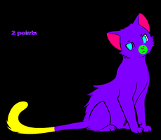 2 point cat adoptable by Points-from-me-2-U