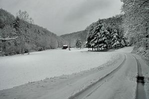 Road to Winter by TimLaSure