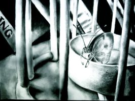 In a Cage: charcoal by xxswanfeather