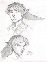 Headshots: Link by DMel87