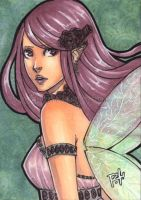 aceo - pocket fairy by pencil-butter