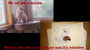 My cat ate a mouse... by Insanity-C