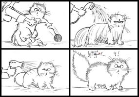 032. How to Wash a Persian Cat (Guide For Dummies) by dashassfrost