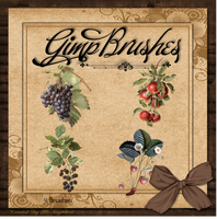 GIMP Brushes   Fruit Brushes by TheAngeldove