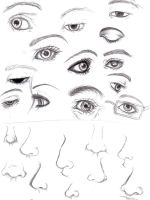 Eyes and Noses by Luzille