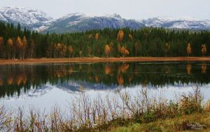 Approaching Winter by Kaeley
