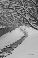 Snowy river by little-white-daisy
