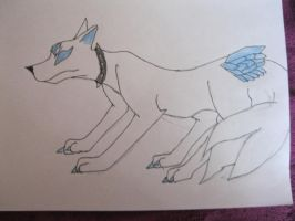 Alpha the Wolf by NewMoon-Dragoness