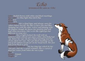 Echo - character sheet by EolianWolf