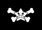 Black Flag Star n Crossbones by eXth-MODE