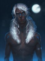 White wolf by Mezamero