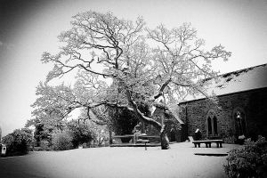 The Big Chill 03 by SneachtaPix