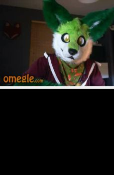 Another Fursuiter by boeingboeing2