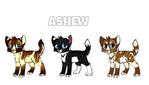 Hypokits || Ashew by rainwolfeh