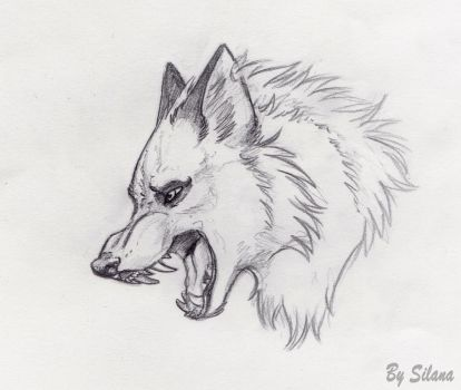 wolf head by SilanaVerley