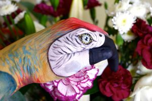 Paul the hand art parrot by KlairedeLys